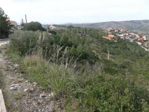 Neubau Olivella