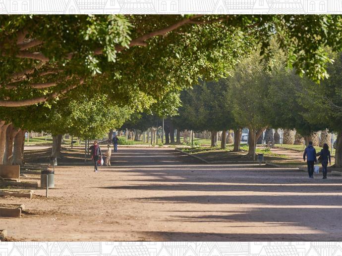 Foto 12 von Boulevard Historiador Vicente Ramos, 41 / Playas, Alicante ciudad (Alicante / Alacant)