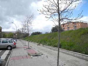 Obra nueva Mérida