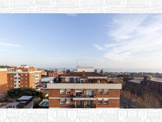 Foto 5 von Cirera (Mataró)