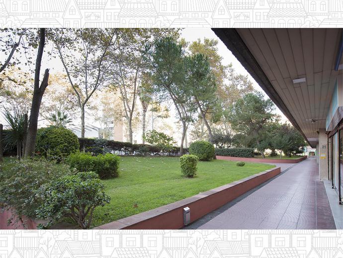 Foto 5 von La Maternitat i Sant Ramon, Les Corts ( Barcelona Capital)