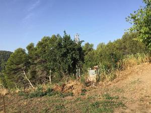 Obra nueva Sant Boi de Llobregat